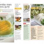 vegetaras gurku receptes copy